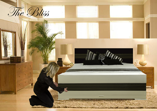 Delicieux Bed With Removable Piece